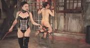 Porno dominacja cipy