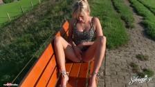 Blondi ujeżdża go na ławce