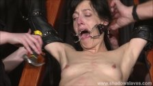 Tortury Elise Graves