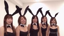 Japońskie seks króliczki