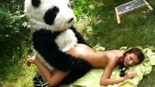 Dopadła ja panda